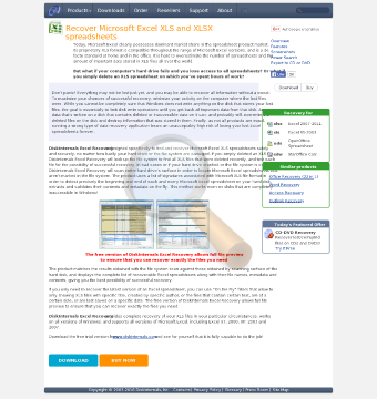 Diskinternals Excel Recovery Business License preview. Click for more details
